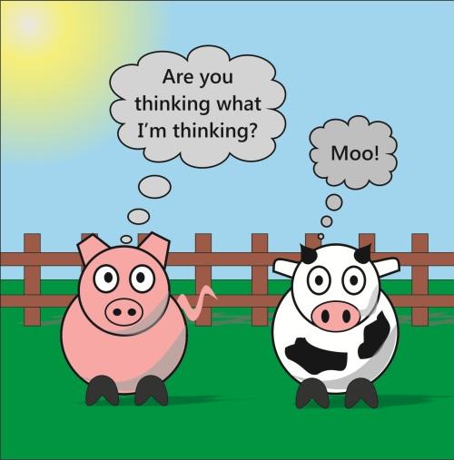 Rudy & Moody - Moo!